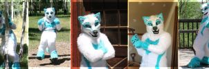 Fursuiting at the Cabin by WindWo1f