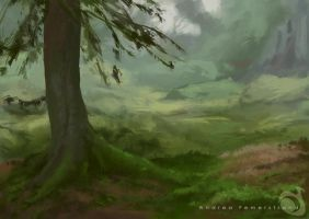 forest study by Noukah
