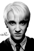 Draco Portrait by Rotae