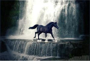Horse In Waterfall Premade by PS-Graphics