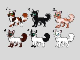 Cat Adopts Batch 1 by Lukasha684