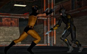 Dark Claw vs Wolverine by hiram67
