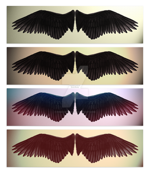 Wing Practice Filters by ZomzArtisticz