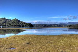 Whitianga Estuary II by carterr
