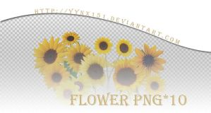 Flower png pack #08 by yynx151