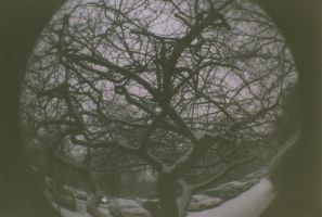 Fisheye 19 by rachguerrero
