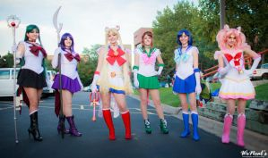 Sailor Scouts by Torremitsu