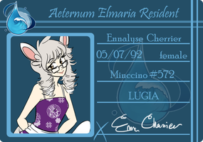 AE: Enna ID card by voyeurs