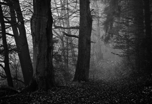 The rest is silence by aw-landscapes