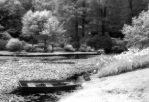 Infrared - Stream with Boat by Ceardach