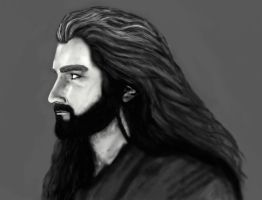 Thorin by devilguineapig
