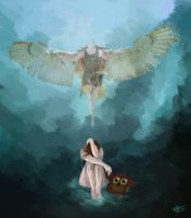 Fly On Owl Wings by Crateris