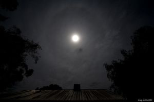 Moon Halo by CapturingTheNight