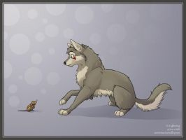 Lakota and the Mouse by blayrd