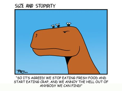 Fly by Size-And-Stupidity