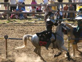 Jousting 2 by IthiliamStock