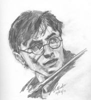 Harry Potter by Xaphori