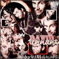 DAvid Tennant Blend 5 by HappinessIsMusic