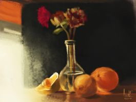 still life (Color and Light study) by manukblm