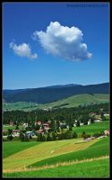 ..:: Mountain view Pano::.. by firegold