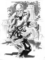 Drax the Destroyer by deankotz