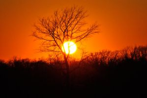 12.12.12 sunset by sweetz76