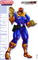 Nintendo Legends Capt. Falcon by Shayeragal