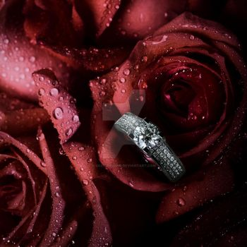 Wedding Ring by Sailszhuang