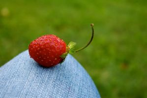 Tiny Strawberry by chiziwhiteafrican