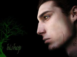Bishop - Neverwinter Nights 2 by LinuDarkFlame