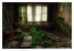Green Room by Volkmaritsch
