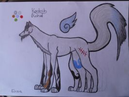 .::Contest Picture::. by Snowstorm-wolf