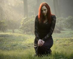 The Black Widow [2] by Luin-Tinuviel