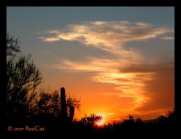 An August Monsoon Sunset Glow by RooCat