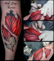 Calf muscles by Reddogtattoo