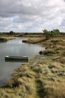Marshes of Vendee by Azagh
