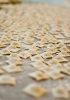 Hand Made Raviolis by gescosteguy