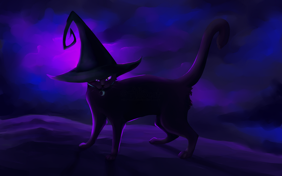 Witch Kitty by Allo-cat