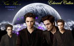 New Moon: Edward by XanderBlack