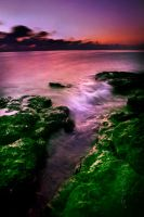 Before the Devastating wave .. by Photographertech