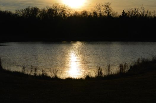 Sunset at the pond by Taowraith