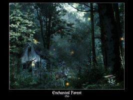 Enchanted Forest by dreamorphosis