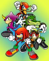 T.Y sonic chaotix group by megax88