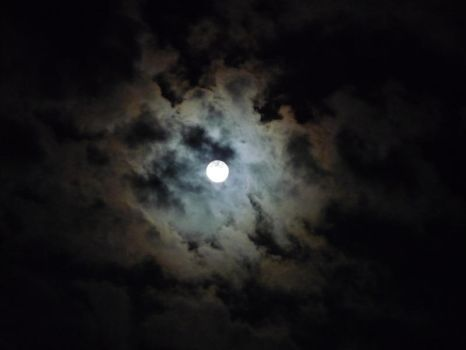 Full moon in night by Ankelwar