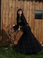 Neo Victorian 2 by Noree-stock