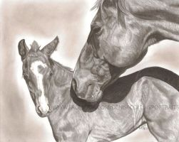 Mare and Foal by FlyingFancy1