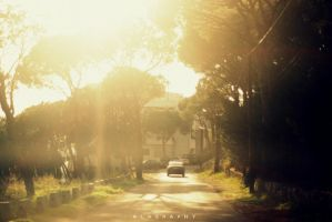 Driving Home by alahay