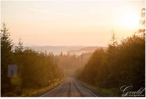 Drive: La Push - Forks by ThisWomanWanders