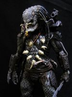 NECA Series 12 Elder Predator 2nd Look by Police-Box-Traveler