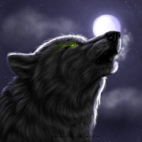 Night Howl by xKerei